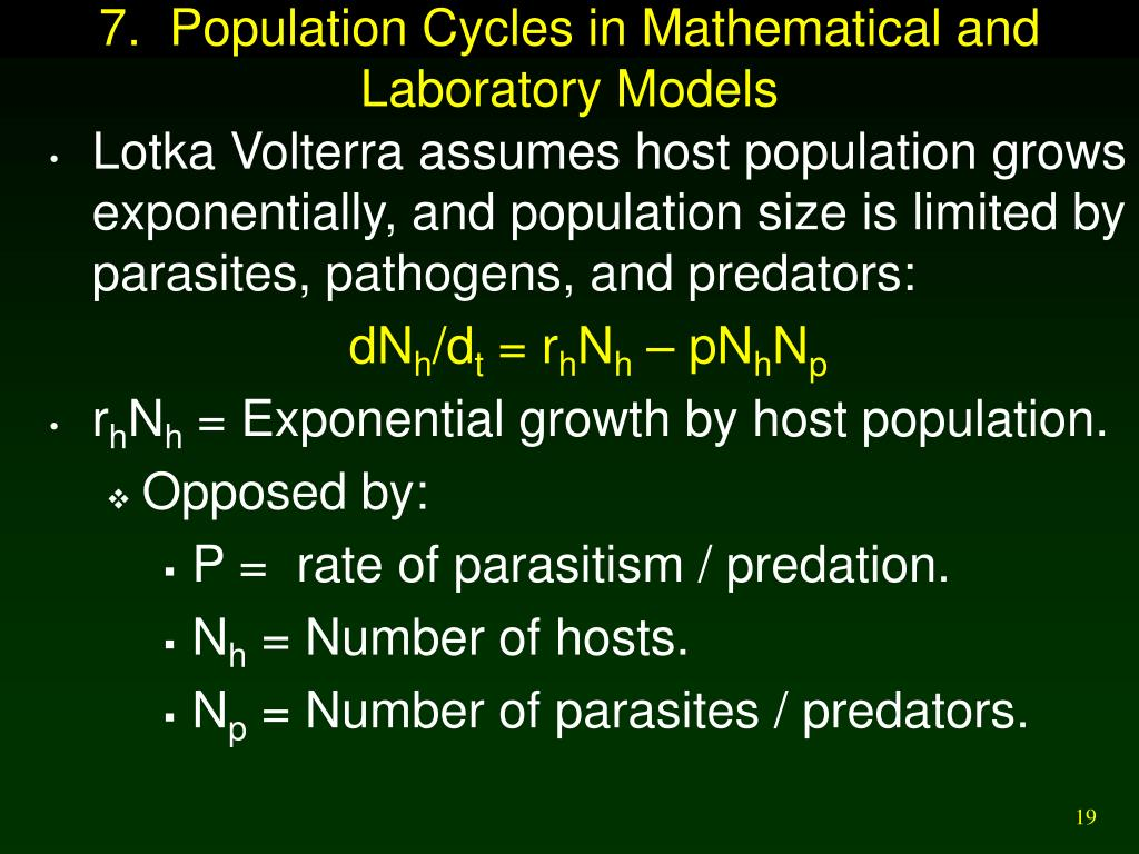 7.  Population Cycles in Mathematical and Laboratory Models