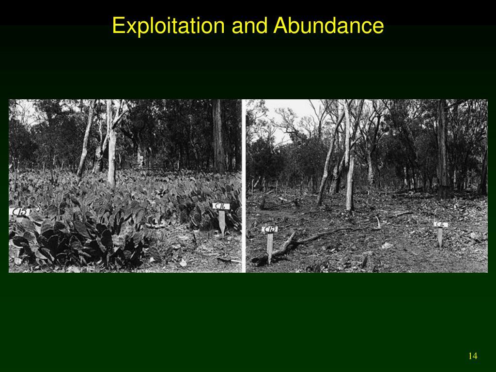 Exploitation and Abundance