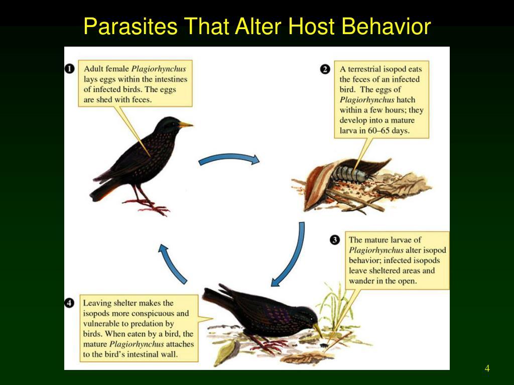 Parasites That Alter Host Behavior
