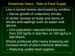 snowshoe hares role of food supply