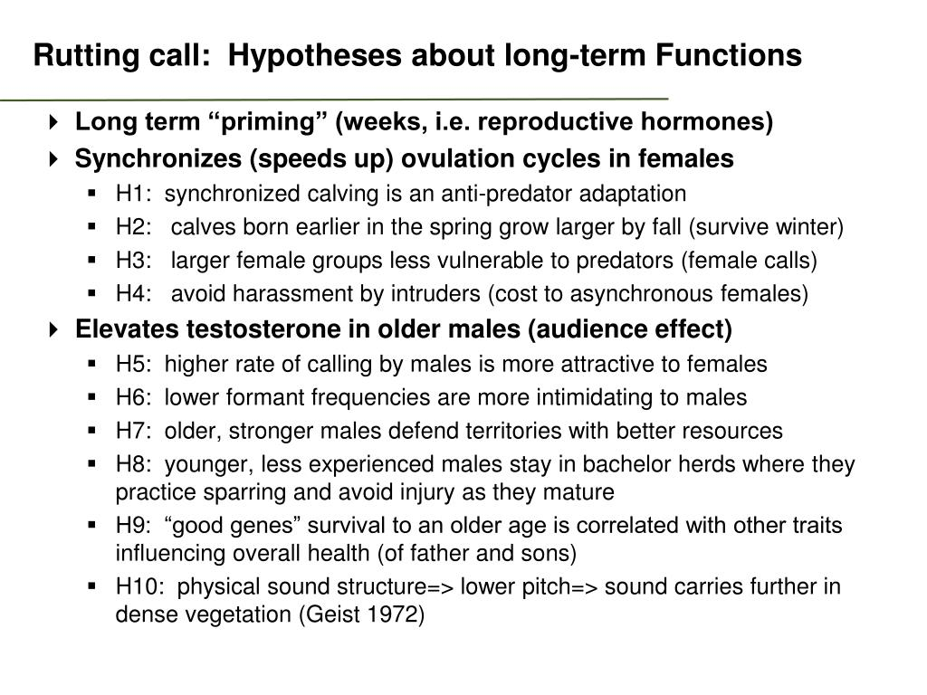 Rutting call:  Hypotheses about long-term Functions