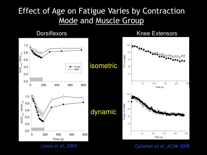 Effect of Age on Fatigue Varies by Contraction