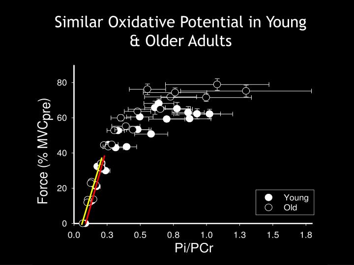 Similar Oxidative Potential in Young & Older Adults