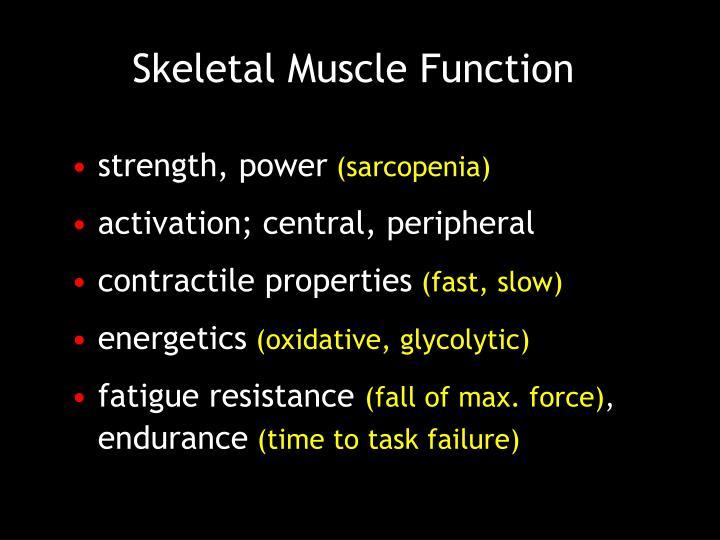 Skeletal Muscle Function