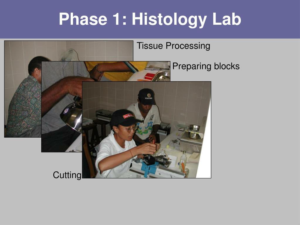 Phase 1: Histology Lab