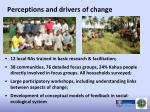 perceptions and drivers of change
