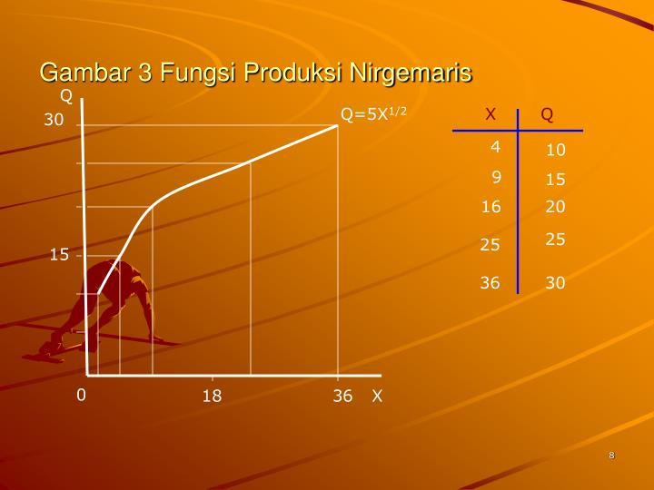Gambar 3 Fungsi Produksi Nirgemaris