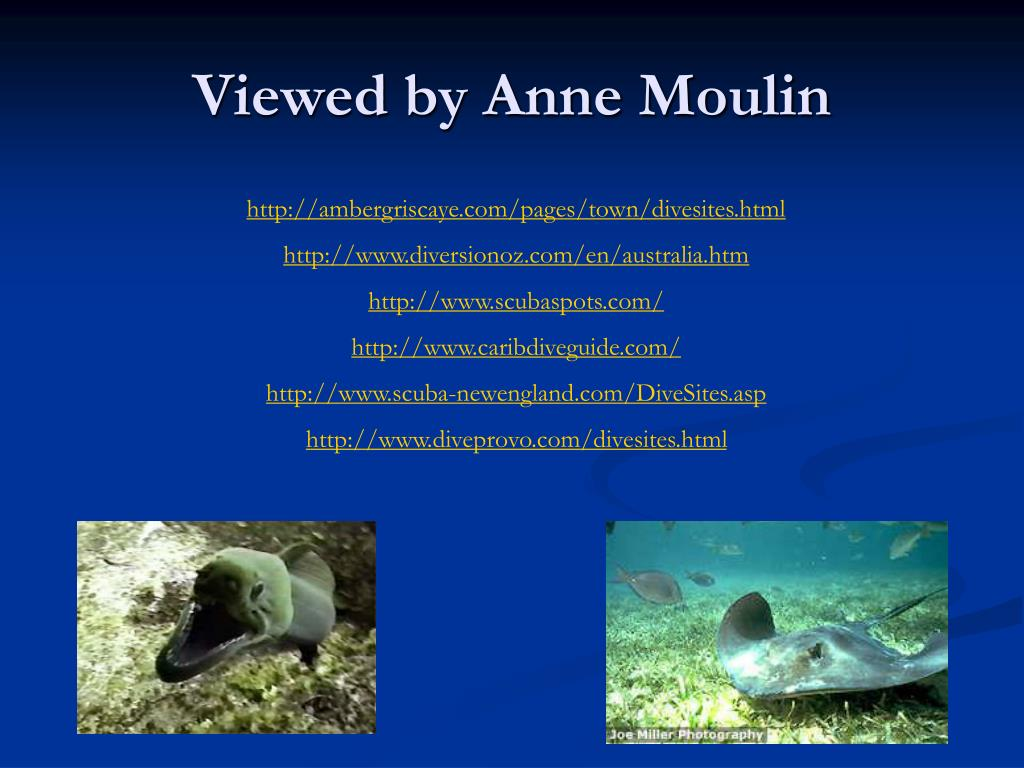 Viewed by Anne Moulin