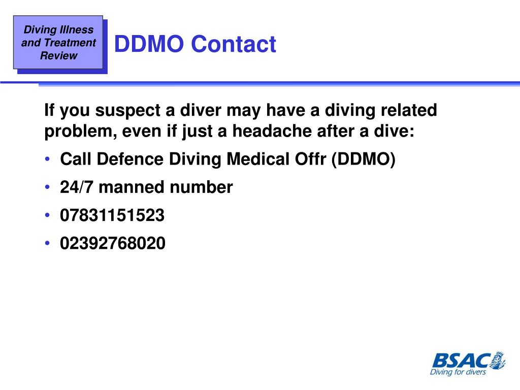 DDMO Contact