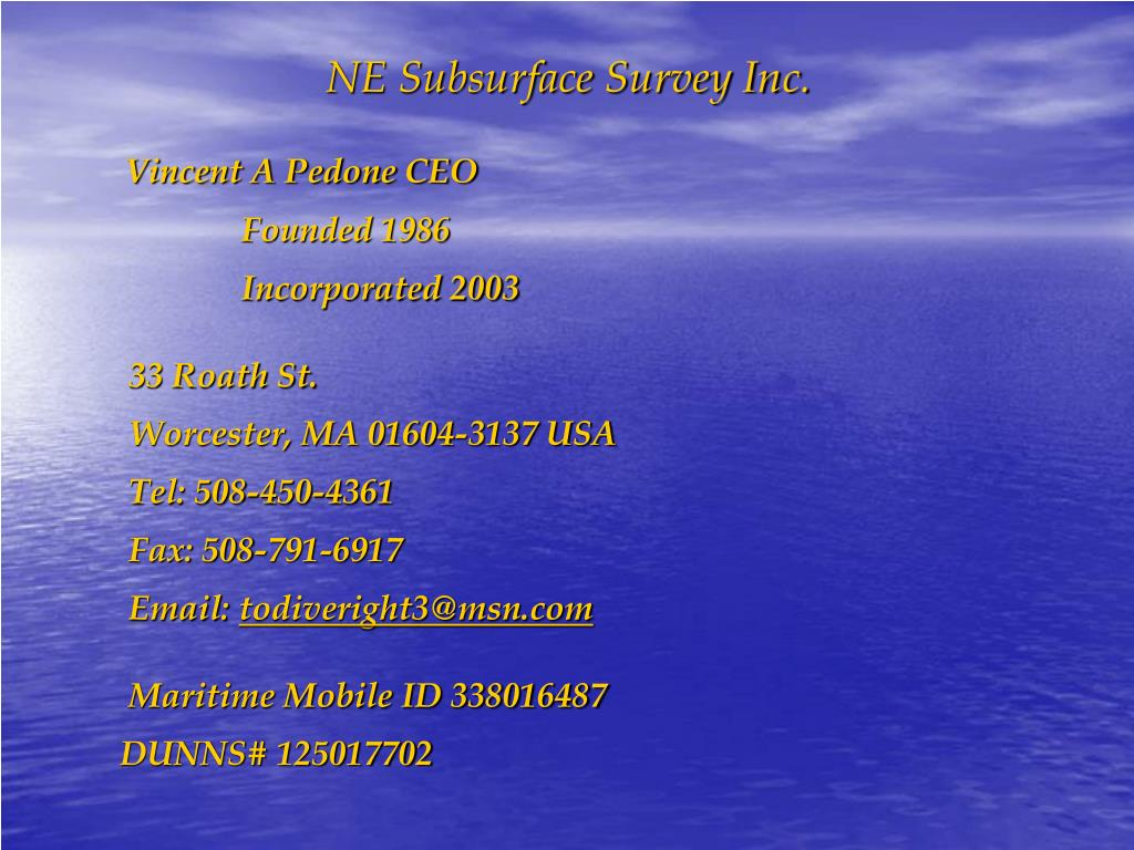 NE Subsurface Survey Inc.