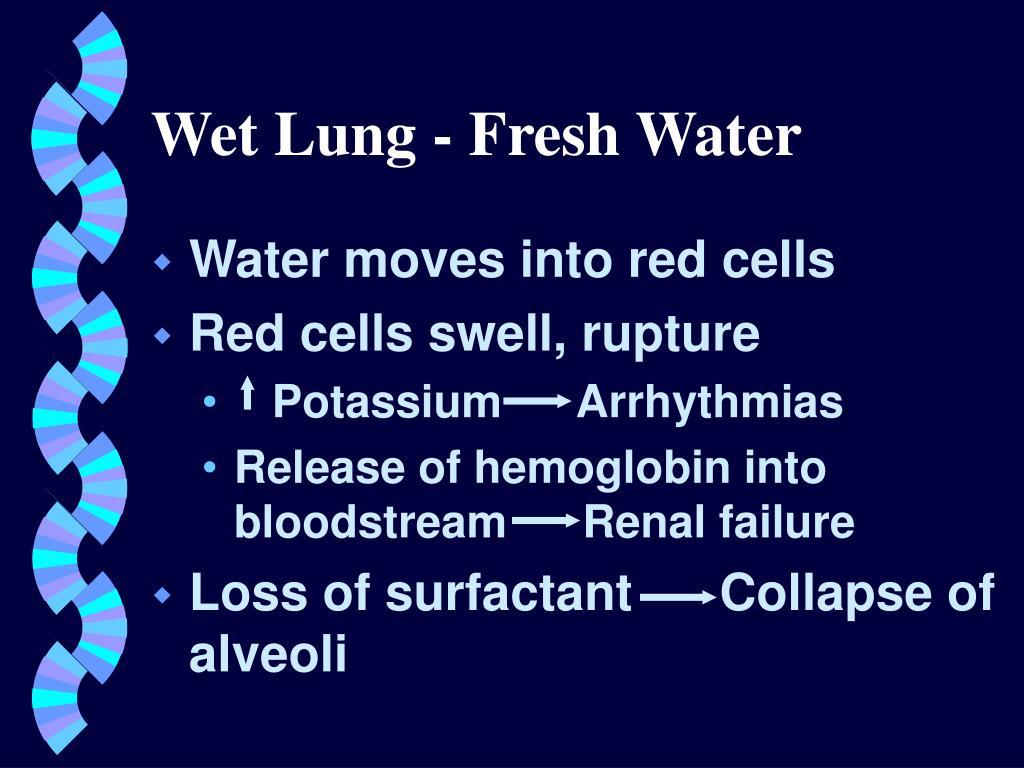 Wet Lung - Fresh Water