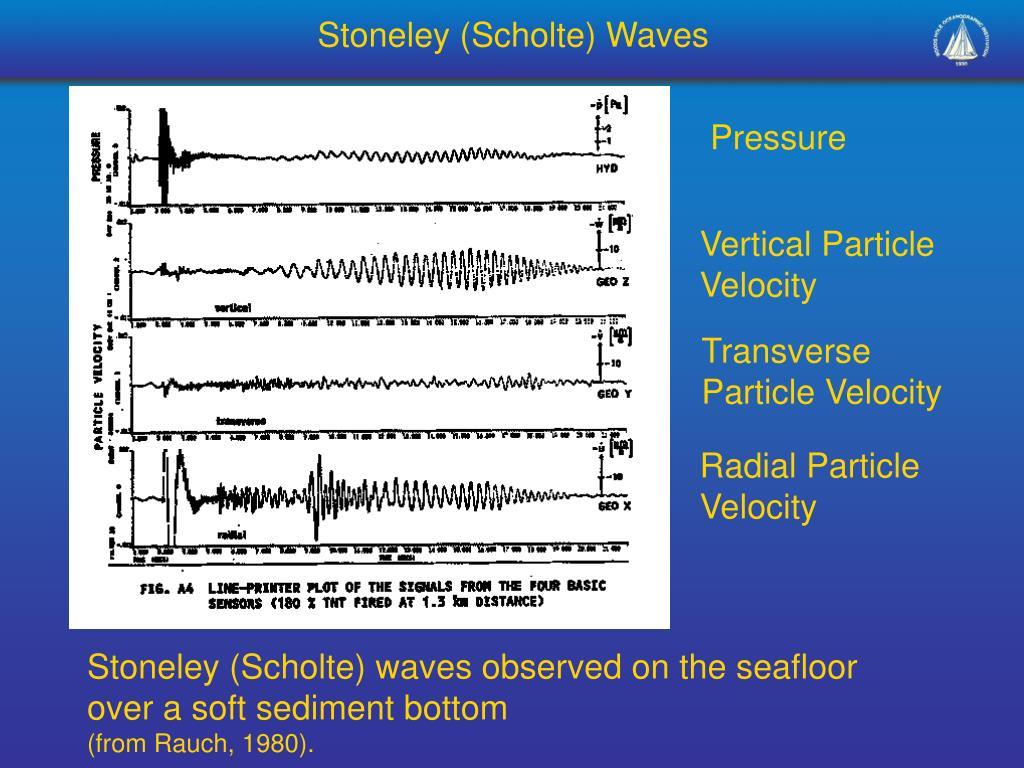 Stoneley (Scholte) Waves