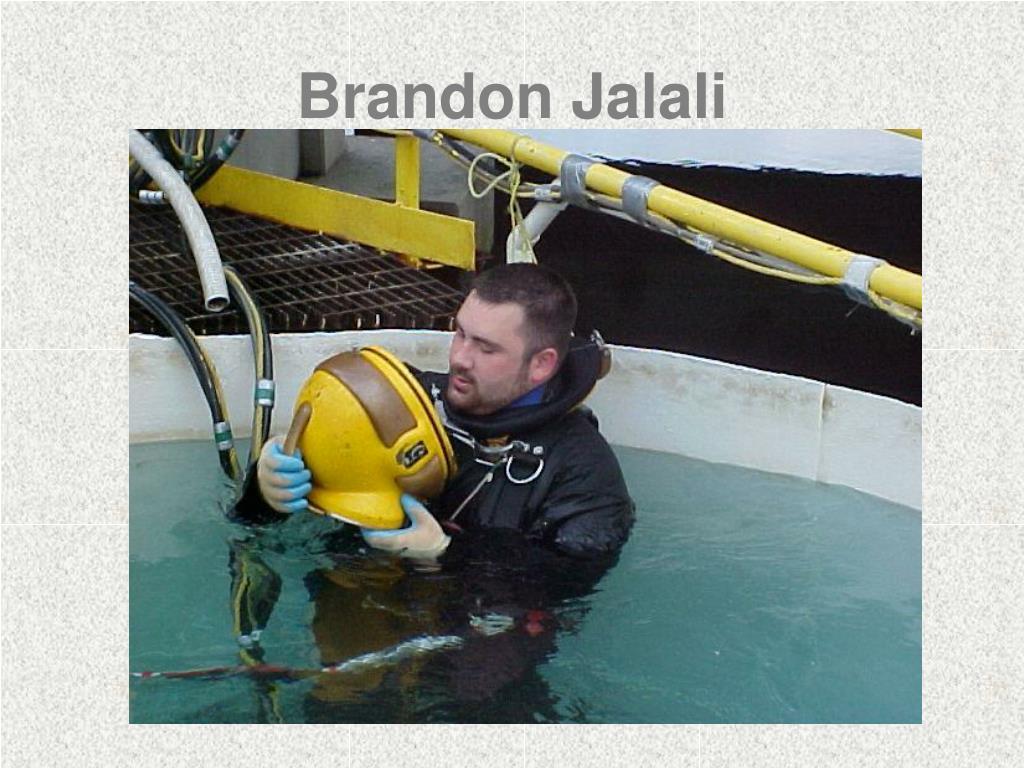 Brandon Jalali