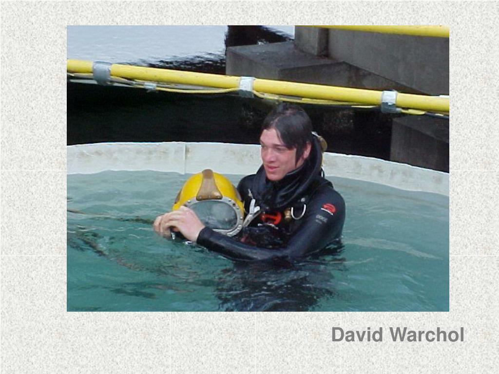 David Warchol