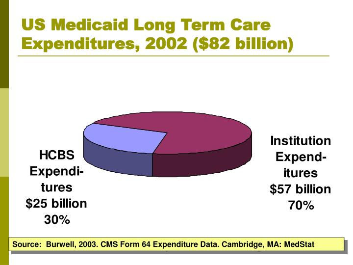US Medicaid Long Term Care Expenditures, 2002 ($82 billion)