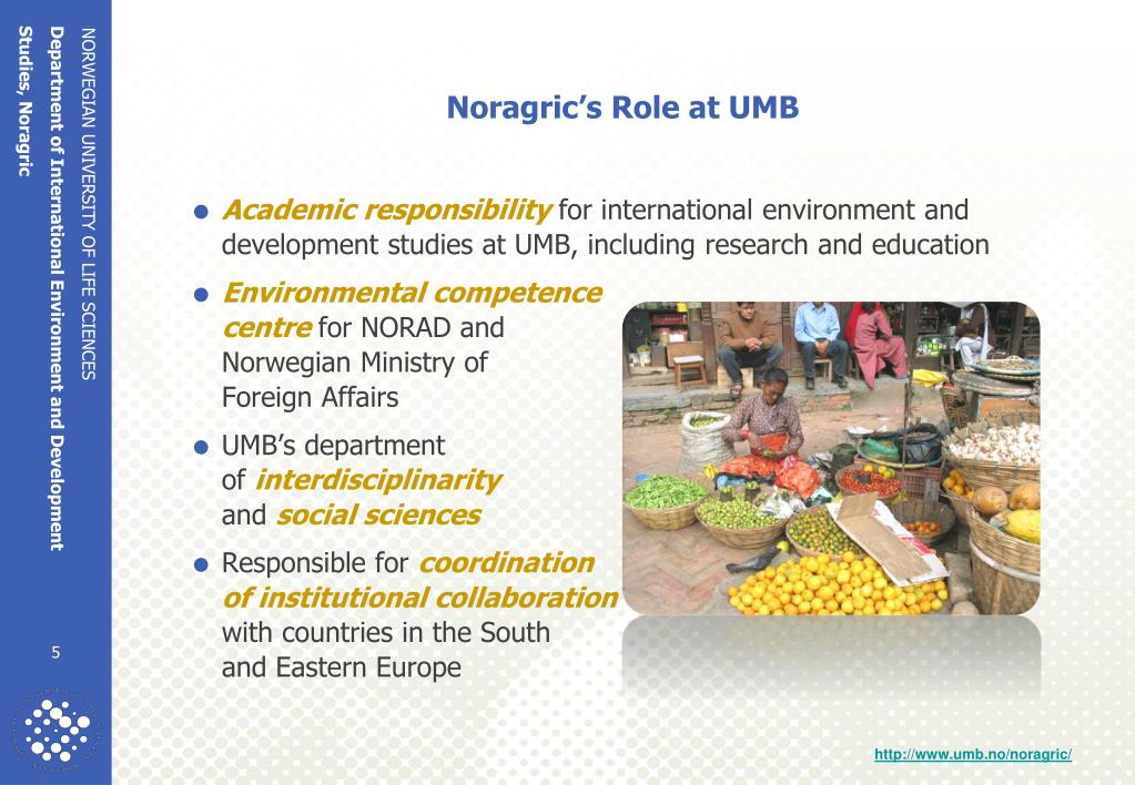 Noragric's Role at UMB