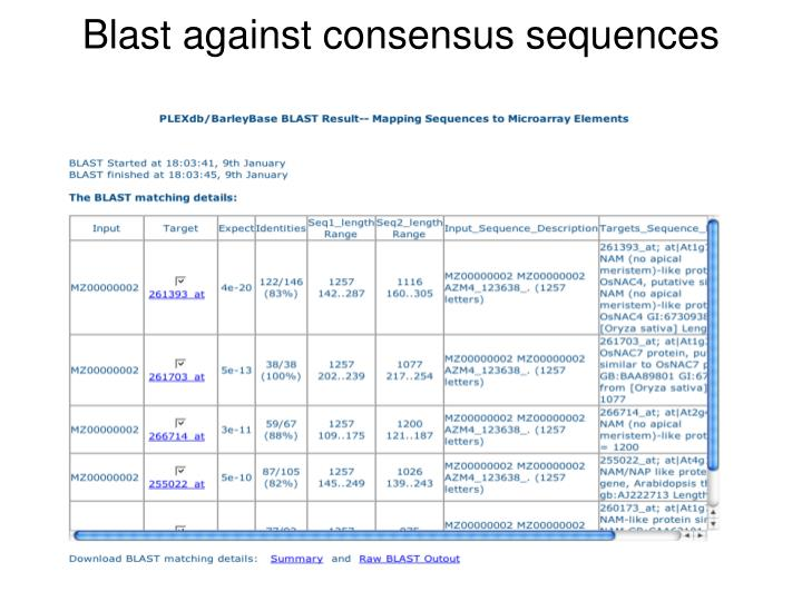 Blast against consensus sequences