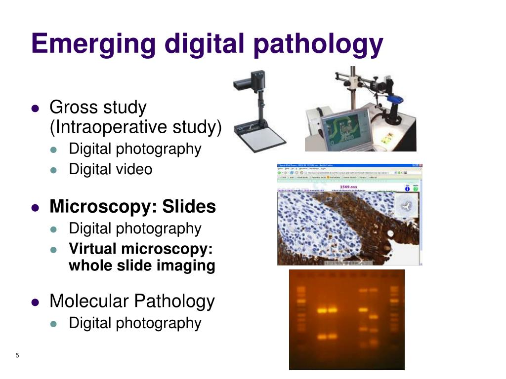 Emerging digital pathology