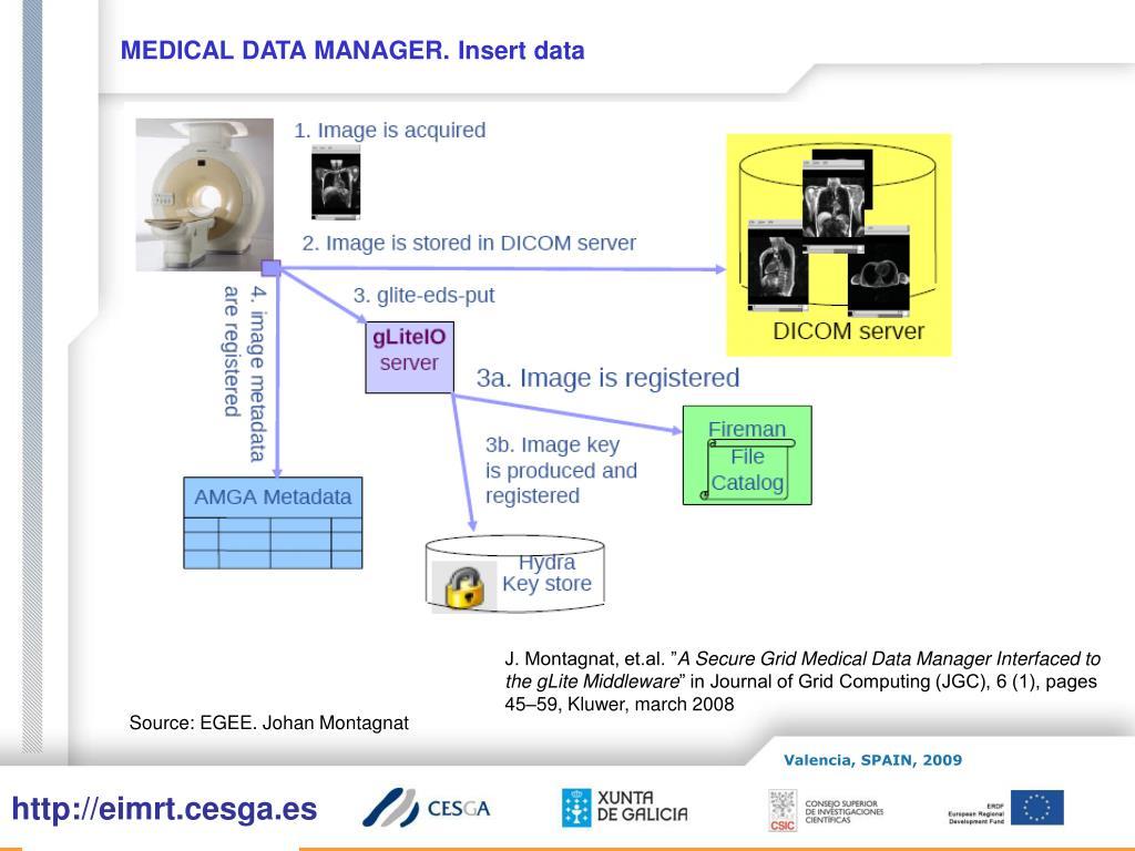 MEDICAL DATA MANAGER. Insert data