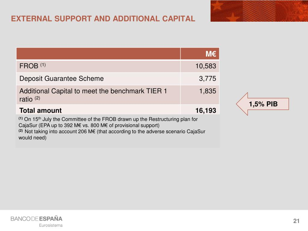 EXTERNAL SUPPORT AND ADDITIONAL CAPITAL