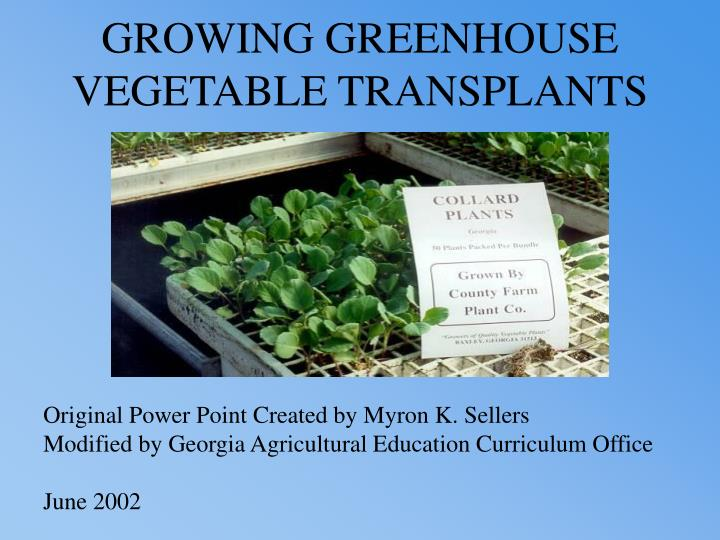 Growing greenhouse vegetable transplants