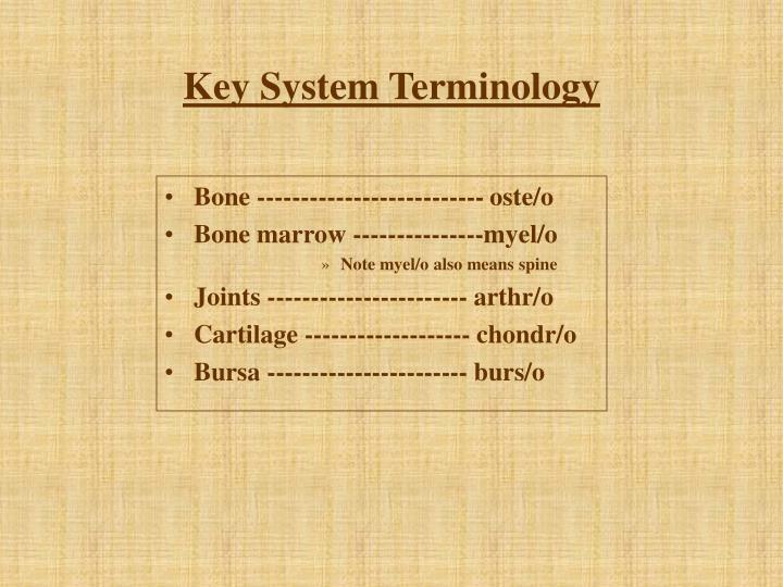 Key System Terminology