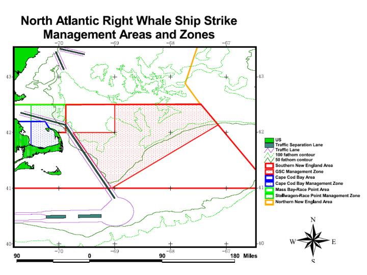 Right whale ship strike strategy northeast region