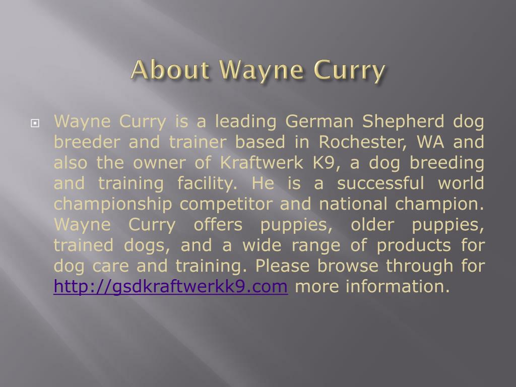 About Wayne Curry