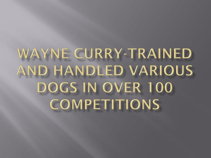 Wayne curry trained and handled various dogs in over 100 competitions