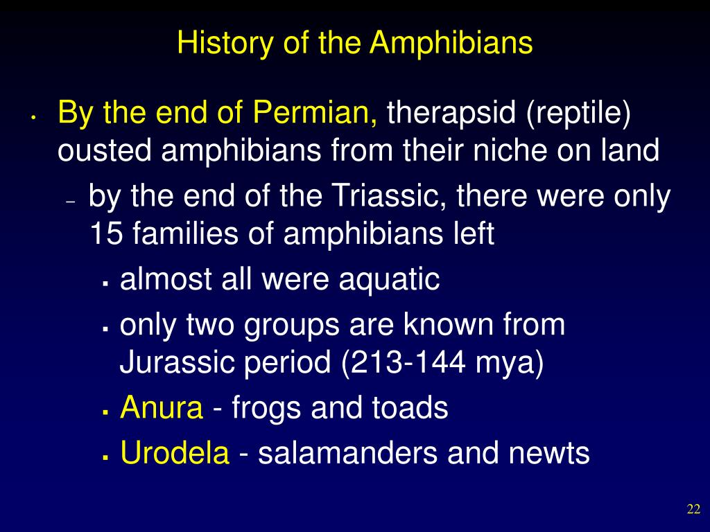 History of the Amphibians