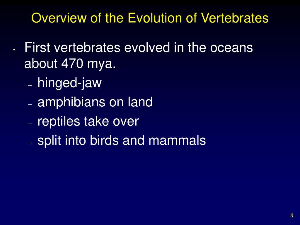 Overview of the Evolution of Vertebrates
