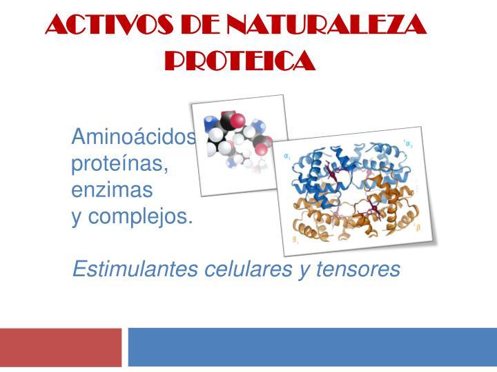ACTIVOS DE NATURALEZA