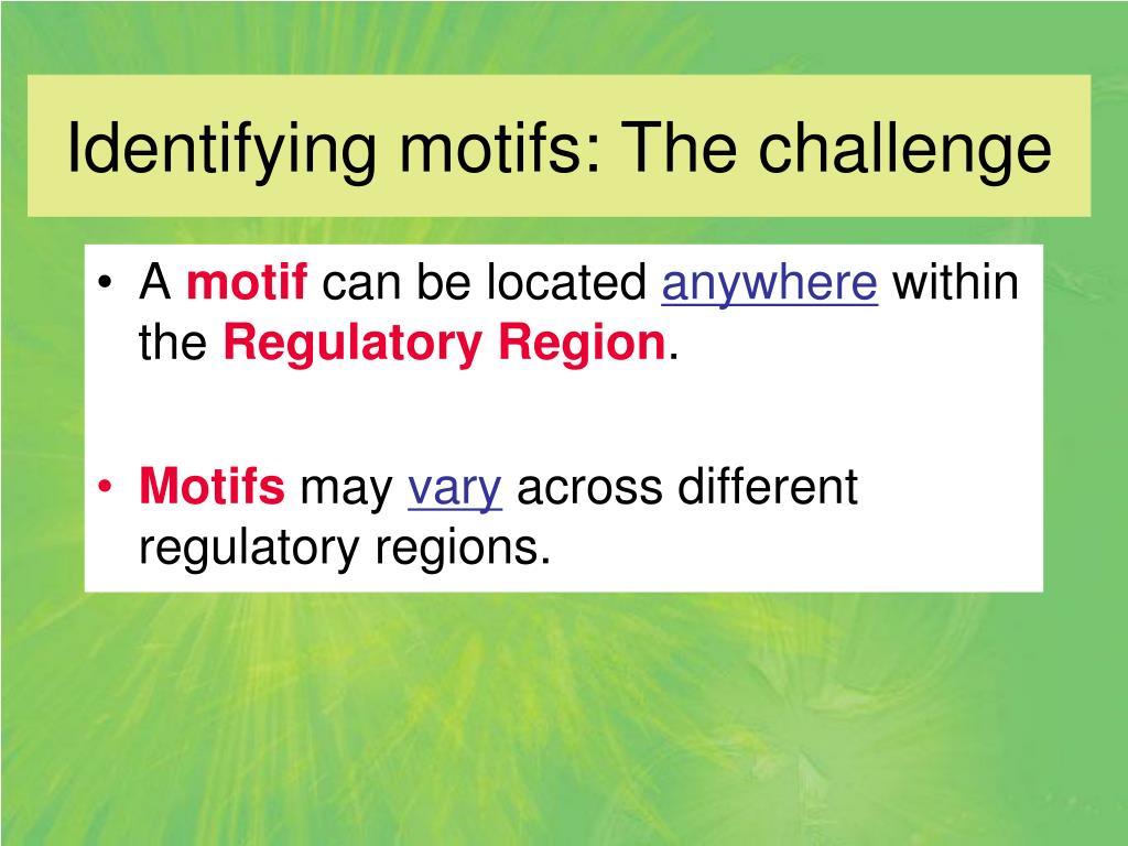 Identifying motifs: The challenge