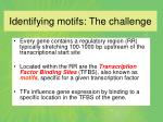 identifying motifs the challenge9