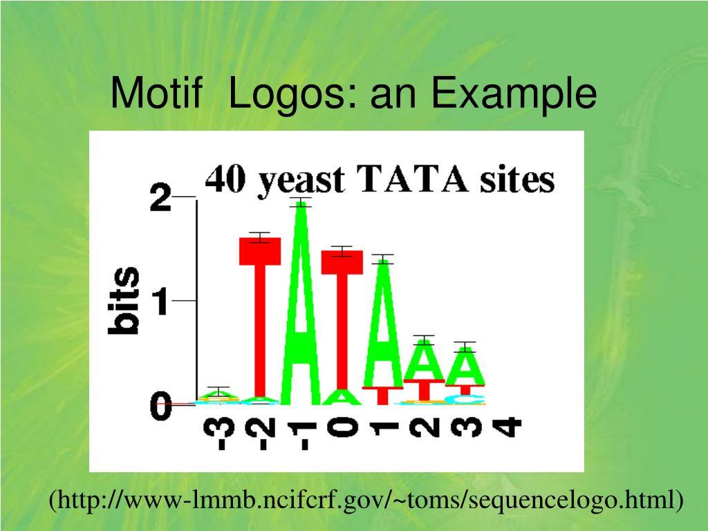 Motif  Logos: an Example