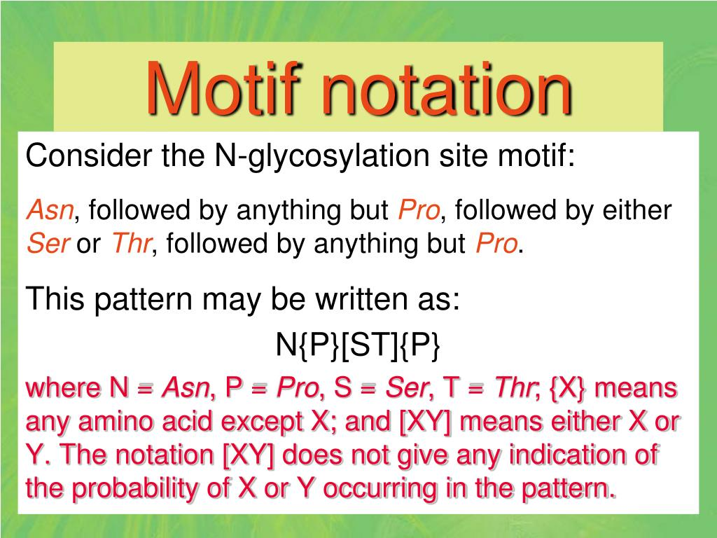 Motif notation