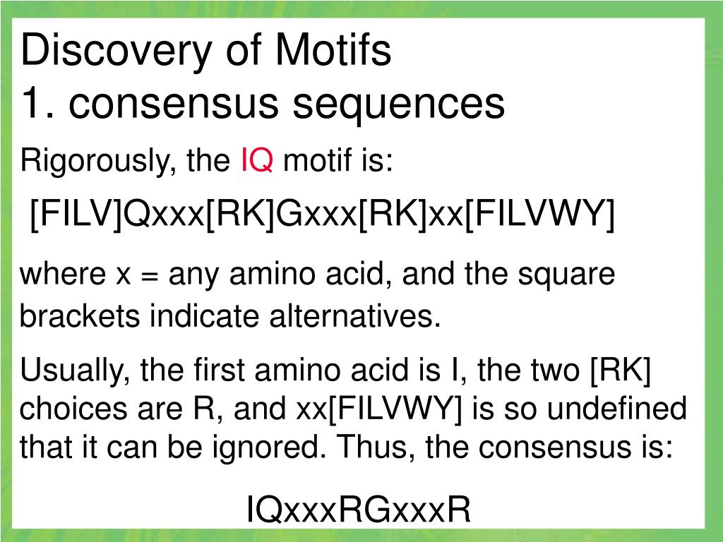 Discovery of Motifs