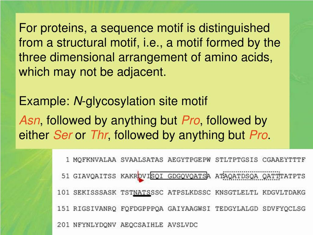For proteins, a sequence motif is distinguished from a structural motif, i.e., a motif formed by the three dimensional arrangement of amino acids, which may not be adjacent.