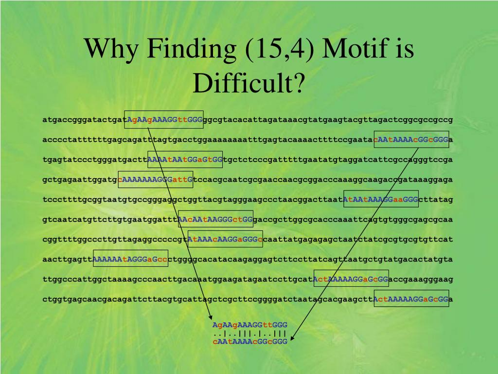 Why Finding (15,4) Motif is Difficult?