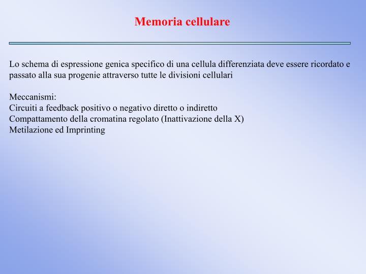 Memoria cellulare
