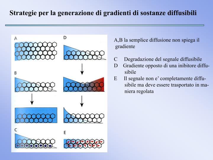 Strategie per la generazione di gradienti di sostanze diffusibili