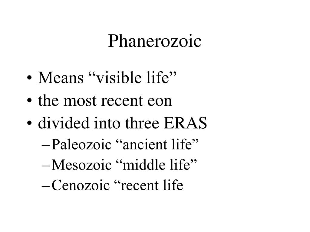 Phanerozoic