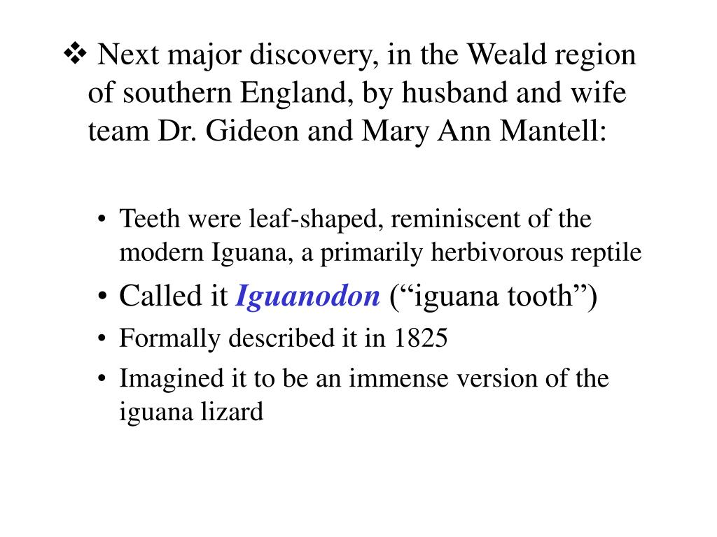 Next major discovery, in the Weald region of southern England, by husband and wife team Dr. Gideon and Mary Ann Mantell: