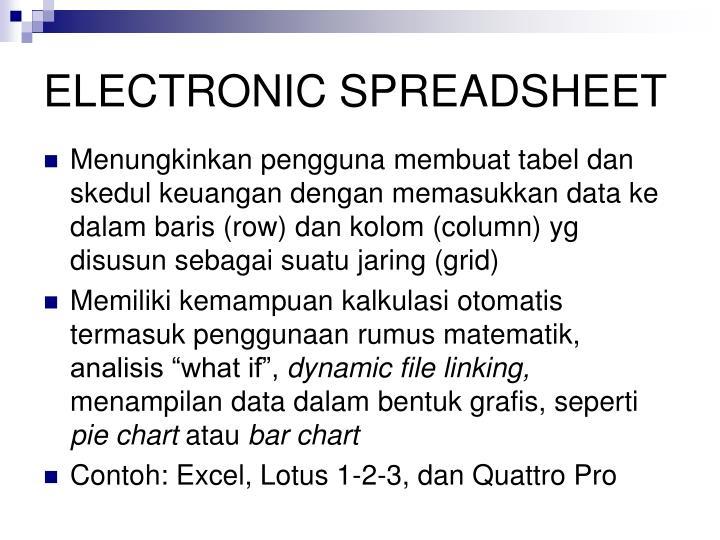 ELECTRONIC SPREADSHEET