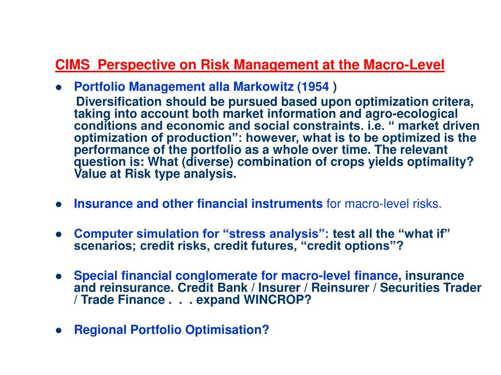CIMS  Perspective on Risk Management at the Macro-Level