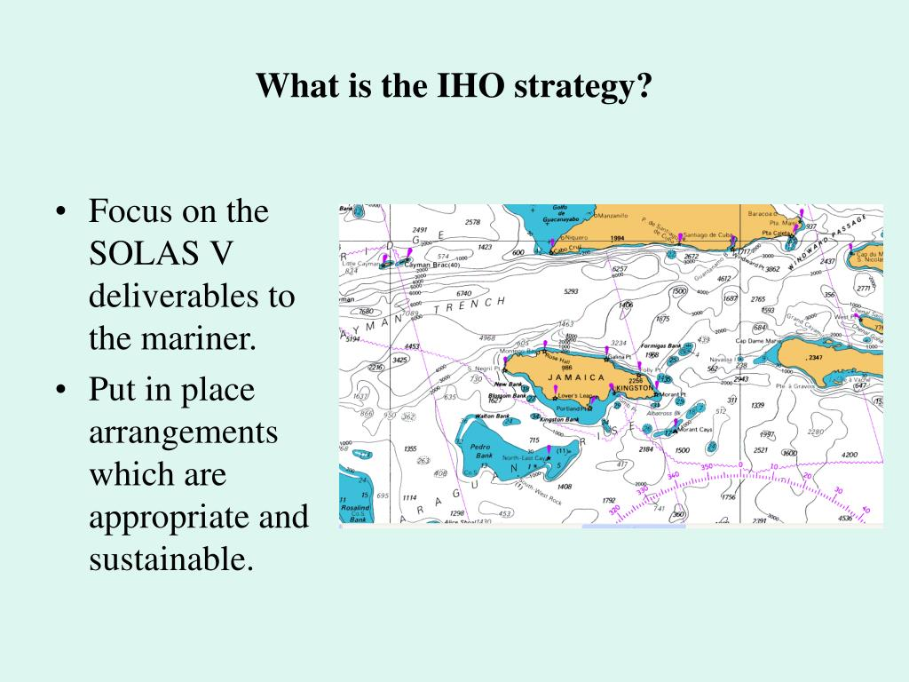 What is the IHO strategy?