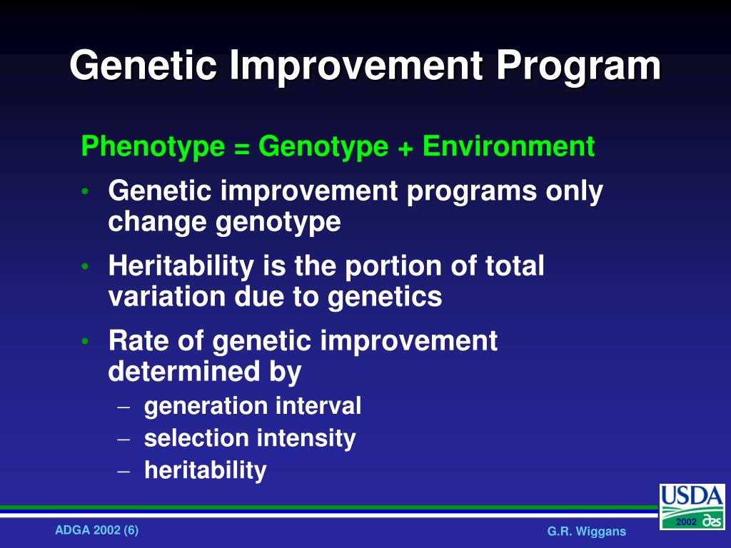 Genetic Improvement Program