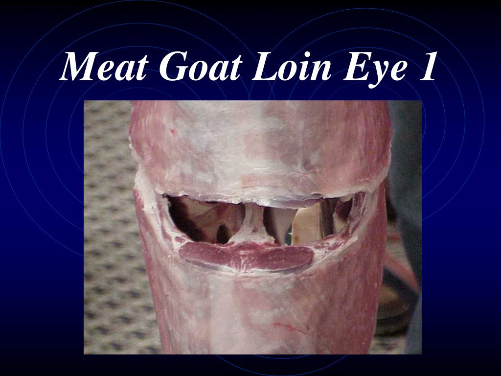 Meat Goat Loin Eye 1