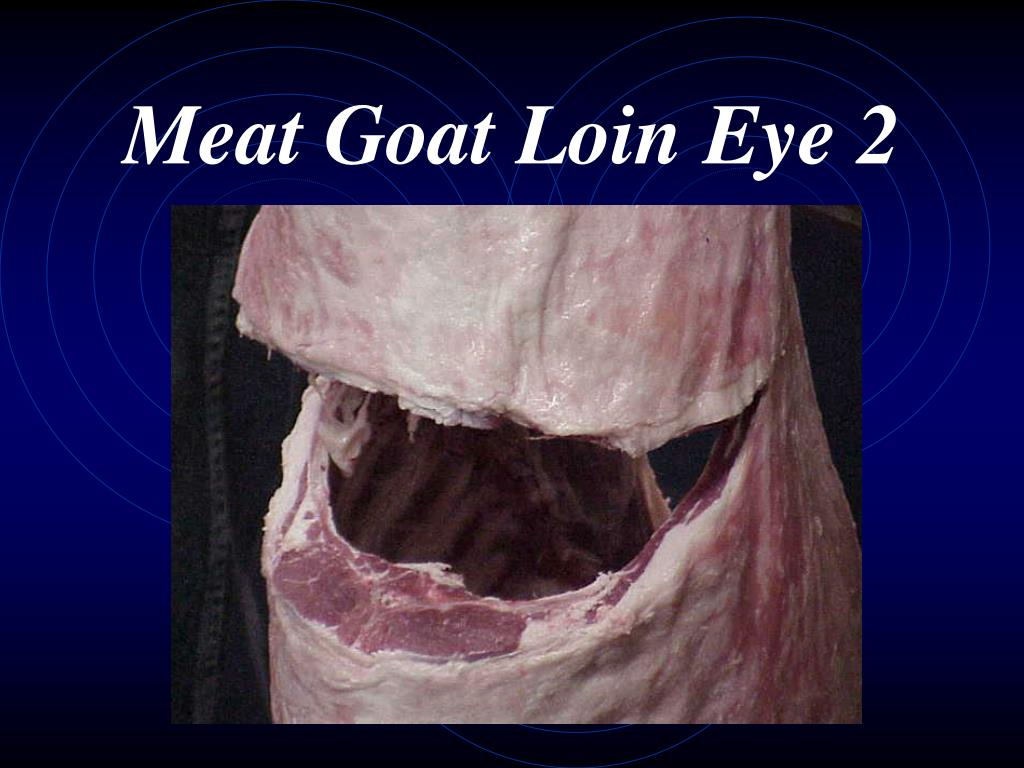 Meat Goat Loin Eye 2