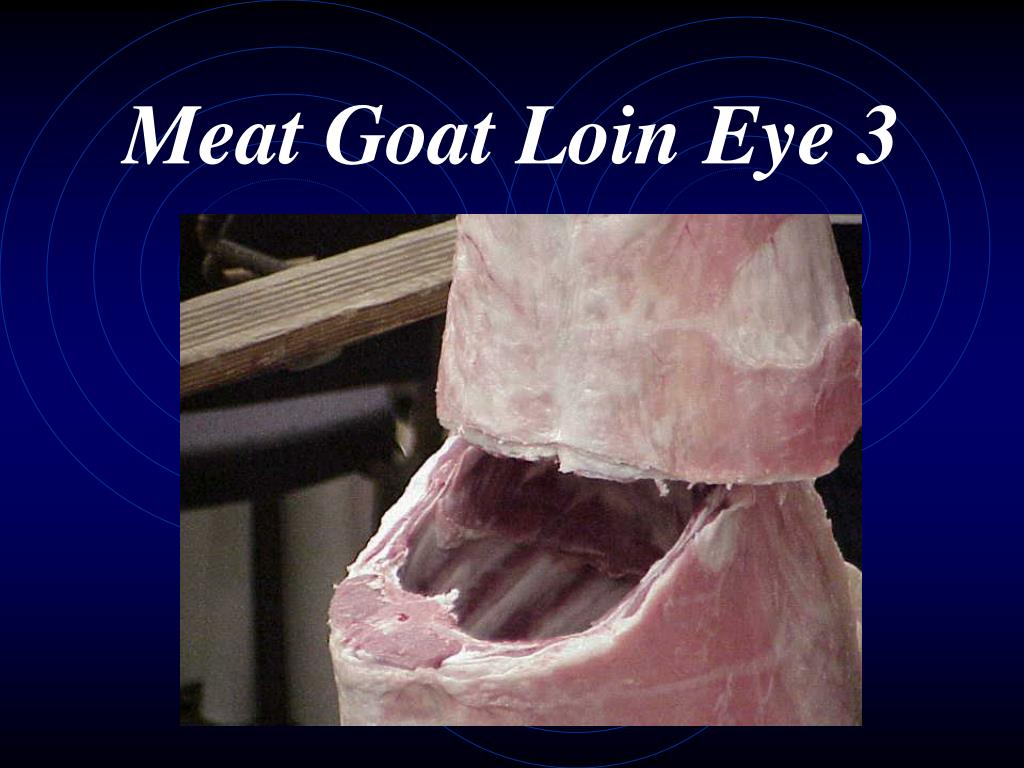 Meat Goat Loin Eye 3
